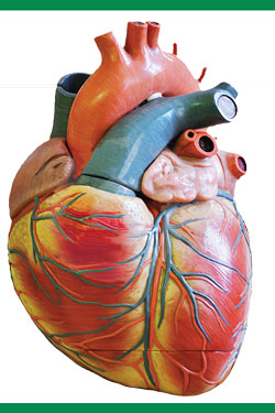 آب یونیزه و درمان بیماریهای قلبی