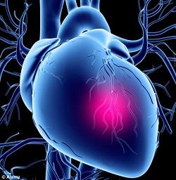 بیماری های قلبی