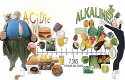 چاقی و غذاهای اسیدی و قلیایی